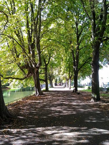 Park in Köln