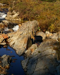 NorthGlenSannoxWater19 (Assja) Tags: autumn mountains fall water leaves forest landscape golden scotland highlands rocks stream heather herbst glen hills naturereserve valley bracken rowan isleofarran birches indiansummer birchtree schottland wirbel herbststimmung ruska naturreservat hochland wildbach zauberwald birkenwald farnkraut heidekraut ebereschen torfmoor remarkabletrees feenwald wildpfad thebrackenisgoldinthesun northendofarran subarktischestimmung
