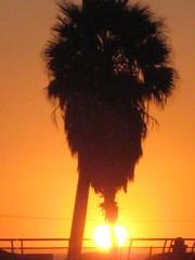 VENICE BEACH CALIFORNIA SEPT 23, 2010 075 (NameOnRice.com) Tags: venice sunset usa art america graffiti los mural angeles rip boardwalk walls lakers cronk venicebeachcaliforniasept232010