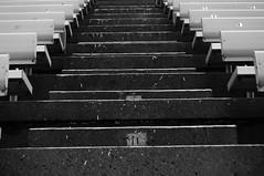Heading up (daniellih) Tags: seattle bw white black macro uw dawg field lines stairs campus lens washington football nikon husky stair university dof bokeh stadium label seat letters line seats micro alphabet universityofwashington daze alphabets  d90  daniellih