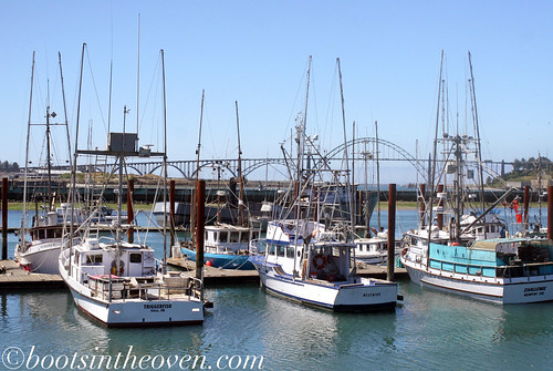 Fishing vessels and a bridge