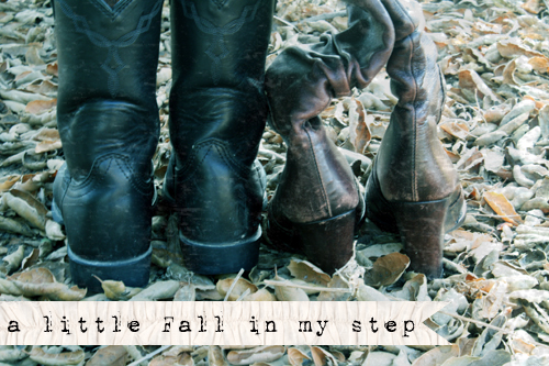 A little Fall in my step