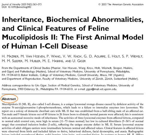 Essay/Term paper: Radiology