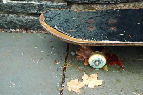 skateboard pastoral