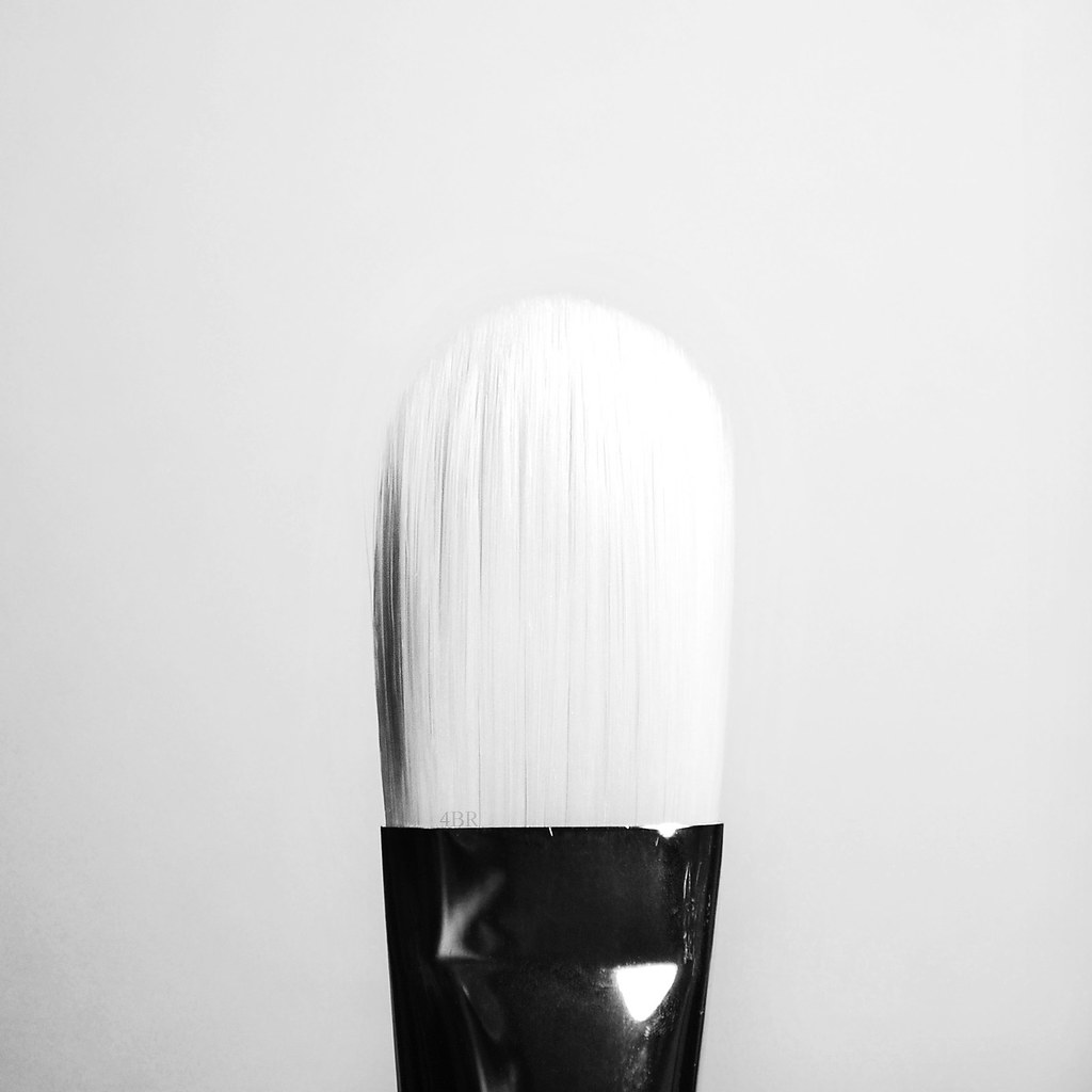 Monochrome paint by ameena rojee.