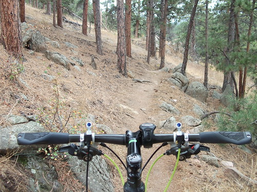GS1 testing in Horsetooth Mountain Park