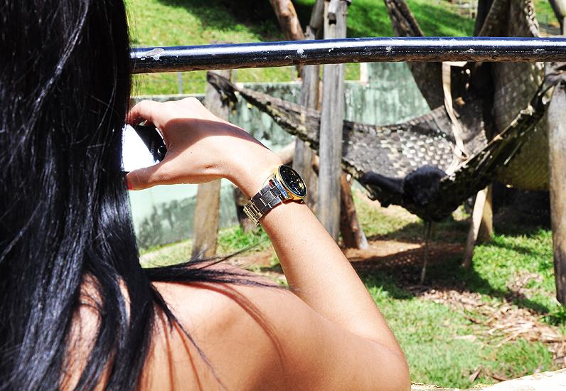 soteropoli.com fotografia fotos de salvador bahia brasil brazil 2010 zoo zoologico by tuniso (16)
