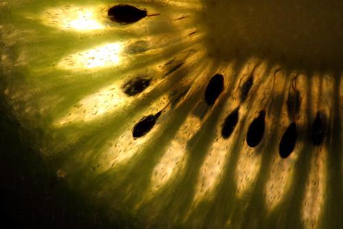 dark kiwi