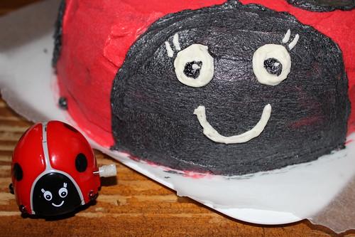 Ladybug cake face
