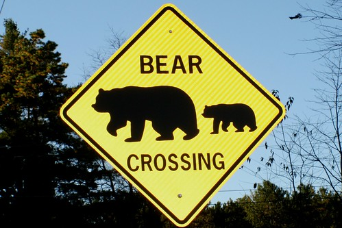 Bear Crossing Road sign