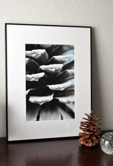 Pine Cone Print