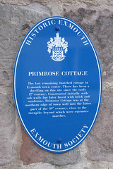Photo of Blue plaque № 4462