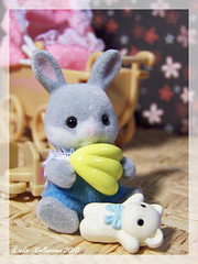 Pirouli (Lolie) Tags: baby rabbits sylvanianfamilies