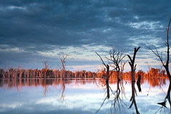 Forbes Lake (Sam Ili) Tags: light sunset sky sun lake color reflection water canon australia symmetry forbes dri canon1740mm4 5dmarkii
