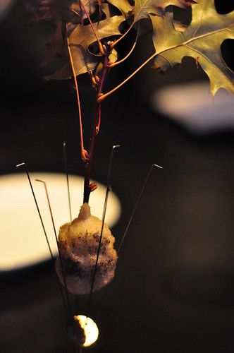 Alinea: Pheasant, Green Grape, Burning Leaves