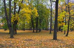 Kalamaja kalmistupark.(Endine kalmistu) (Jaan Keinaste) Tags: park autumn tallinn estonia pentax hdr eesti sgis k7 kalamaja kalmistu vanagram kalmistupark