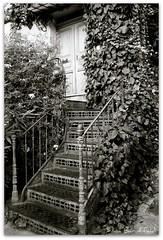 ramatuelle - la scala di ferro (vivi-1966) Tags: scala provence francia borgo vacanza provenza ramatuelle portavacanza