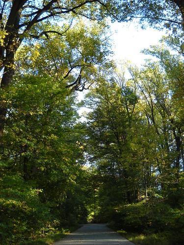 Longwood October 2010 062