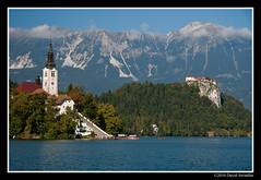 IMG_3128 (David Swindler (ActionPhotoTours.com)) Tags: slovenia bled lakebled
