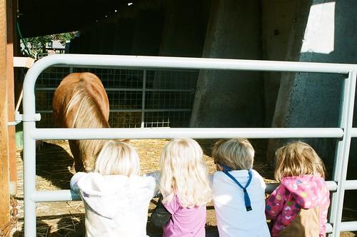 Kids_Horse