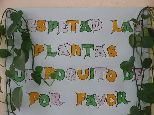respetad las plantas un poquito de por favor