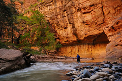 Hiking the Narrows (Ben_D) Tags: utah nps canyon hike zion zionnationalpark narrows virginriver sigma1020 blurbbook d300s zionadventurecompany asweseeit kodakpotd n1010096748 azutvacation