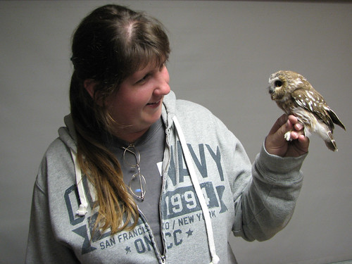 Saw-whet Owl & Amy