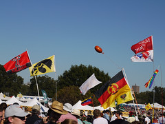 The plethora of flags // ACL 2010