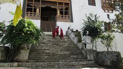Bhutan-1667