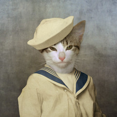 The little rascal (Martine Roch) Tags: ocean boy sea portrait cute texture animal cat vintage costume kitten surreal photomontage surrealist sailor manray petitechose martineroch flypapertextures
