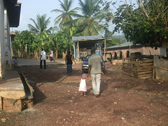 devant la maison des parents (Madvinora) Tags: village ghana palmiers