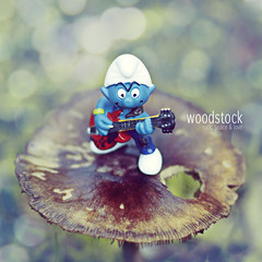 Woodstock (mickiky) Tags: wood blue autumn music stilllife macro verde green nature mushroom rock toy play bokeh guitar blu natura musica autunno bosco fungo puffo