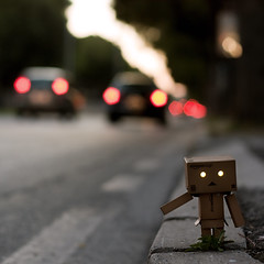 hitch-hiking (i k o) Tags: road trip sunset plant cars canon square geotagged eos lights strada tramonto dof bokeh rimini traveller sidewalk hitchhiking luci viaggio ef50mmf18ii quadrato macchine danbo marciapiede autostop viaggiatore piantina 450d theauthorsplaza theauthorsclub
