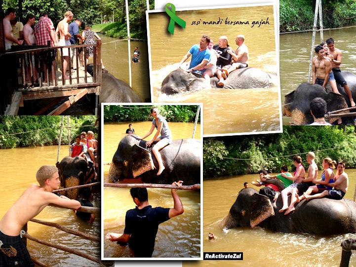 Pusat Konservasi Gajah - elephant bathing