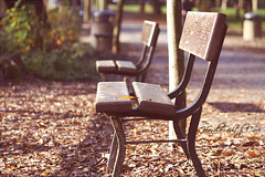 E' tanto che aspetti? (.-. Handle with care .-.) Tags: autumn red leaves foglie bench autunno rosso panchina