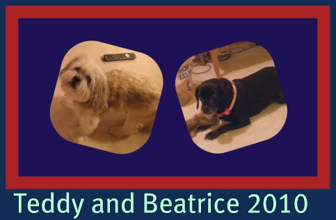 teddy and beatrice 2010