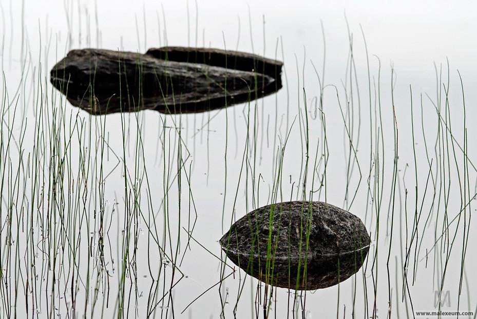 Камушки - Карелия фото