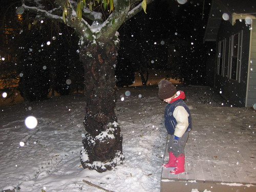 Snow Night