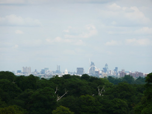View from Richmond Park by flickr.annieandrew, on Flickr