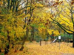 fall rain playground - by indrarado