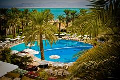~ paradise ~ (Ar~Pic) Tags: pool canon palms israel paradise lounge swimmingpool nearthesea fromtheoutside somethingblueinmylife palm~trees paradisimo sitbythepool