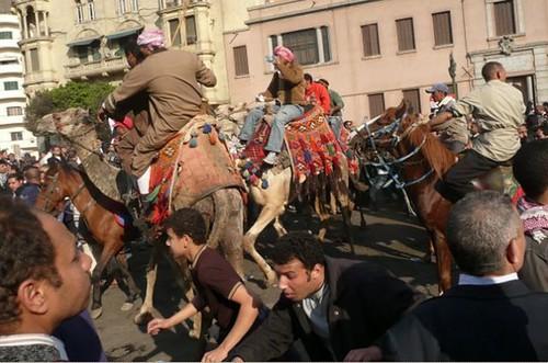 camelscharge