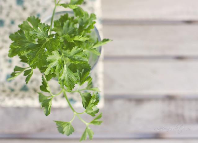 julivert ~ perejil ~ parsley