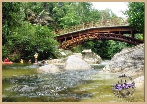 hutan lipur sungai sedim