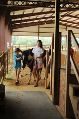 Leaving the arena (Montgomery Area Nontraditional Equestrians (MANE)) Tags: al mane pikeroad