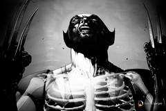Wolverine (Francisco Vargas - Haripako) Tags: valencia wolverine lobezno