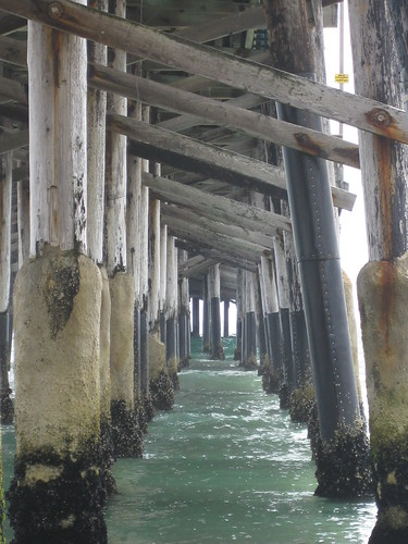 Under Newport Pier