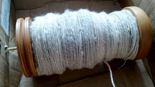TdF white alpaca