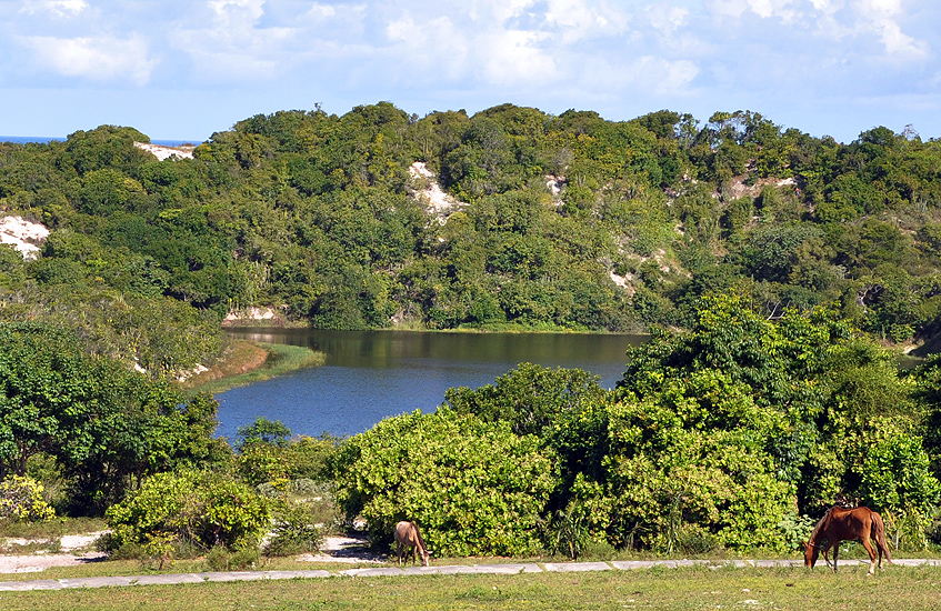 soteropoli.com fotografia fotos de salvador bahia brasil brazil 2010 lagoa do abaete by tuniso (15)