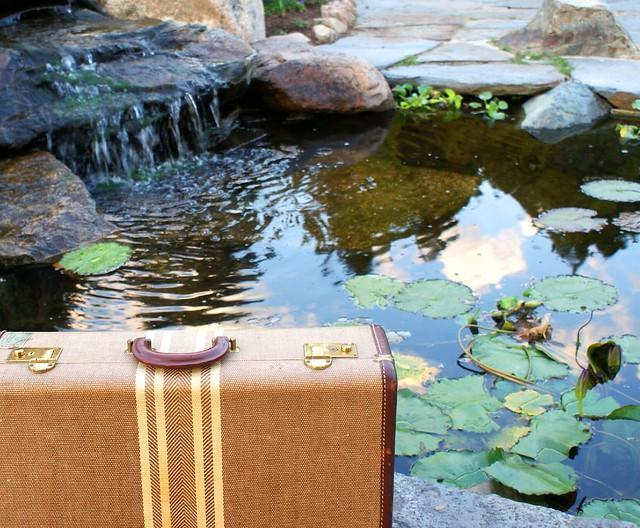 Vintage Suitcase lily pad_1